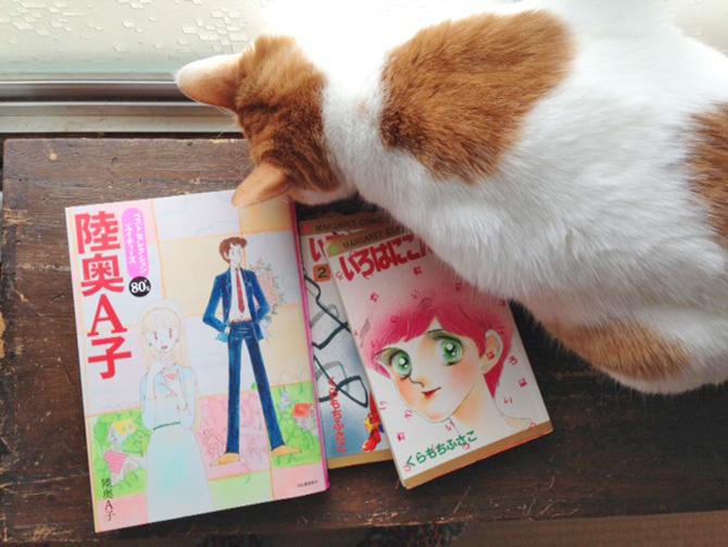 seki-book1