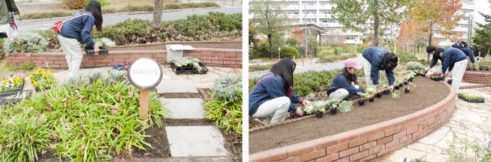 """2週間以上前から""""花いっぱい""""のメンバーが雑草を抜き、土を耕して肥料を入れて準備していた花壇。"""